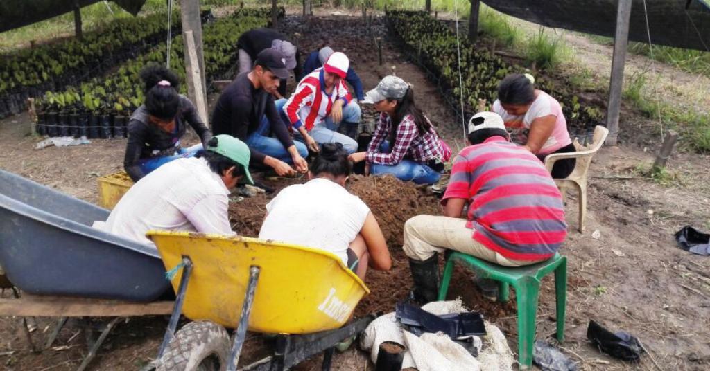La Alcaldía impulsa los procesos de arborización y reconversión bovina.