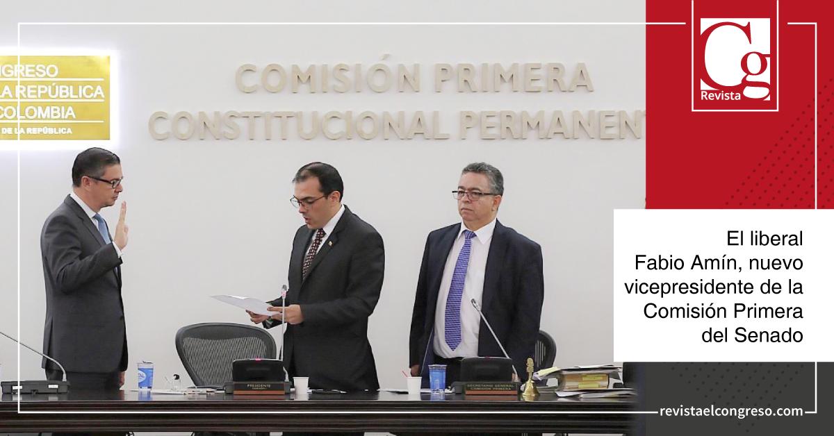 Este martes, Fabio Raúl Amín Saleme, senador del Partido Liberal, fue nombrado vicepresidente de la Comisión Primera del Senado de la República en el período legislativo 2019-2020.