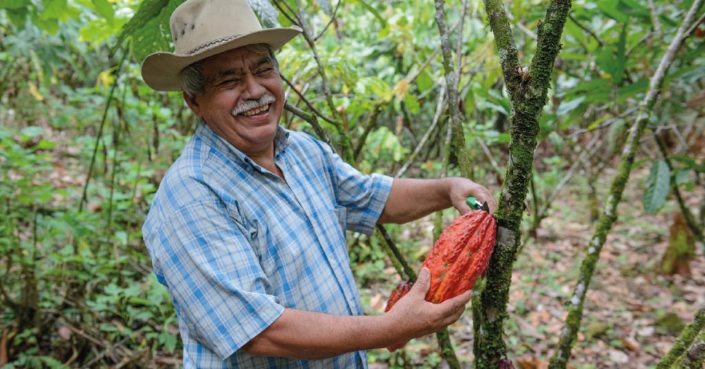 El PROCOMPITE es un proyecto que tiene como objetivo promover el crecimiento económico sostenible de las zonas rurales colombianas. Repsol en alianza con Socodevi y la Embajada de Canadá, fortalecieron estas 5 cadenas productivas en el departamento del Meta: Cacao, Café, Leche, Piscicultura y Patilla (Sandia).