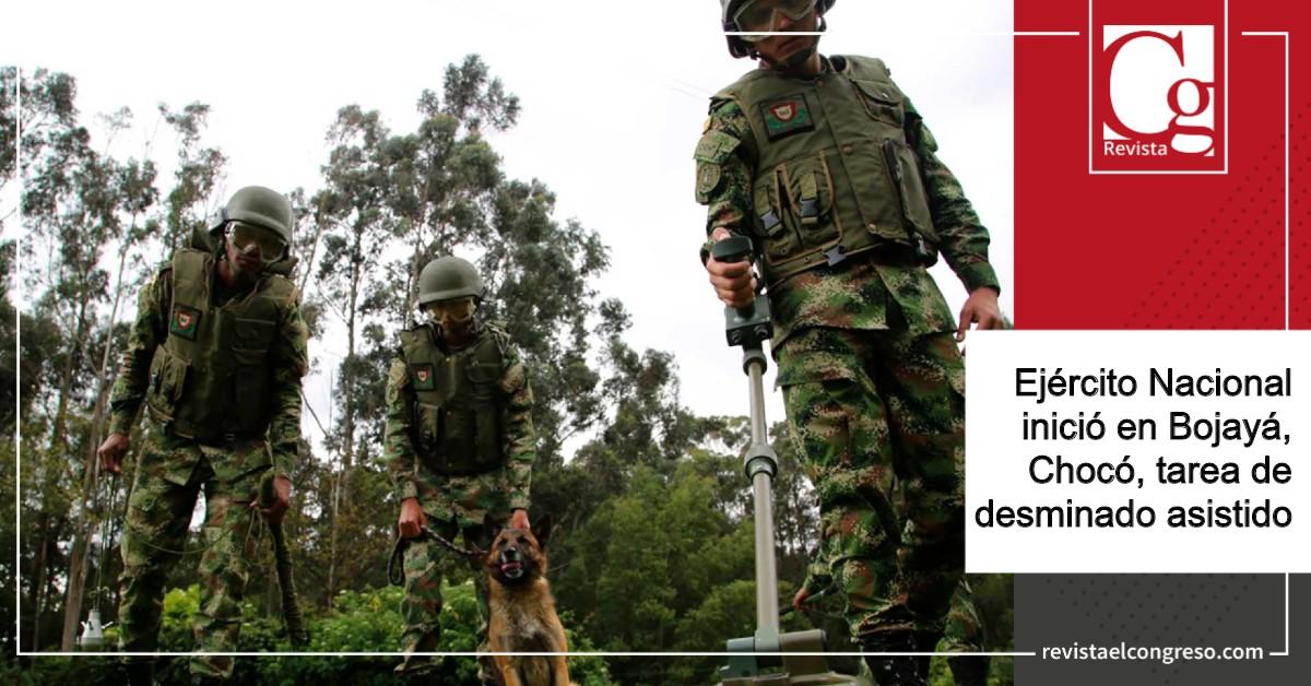El Ejército Nacional inició en Bojayá, Chocó, tarea de desminado asistido