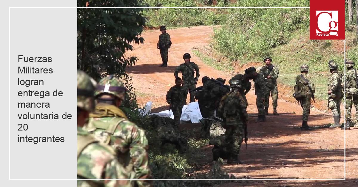 Fuerzas Militares logran entrega de manera voluntaria de 20 integrantes del ELN en el Cauca