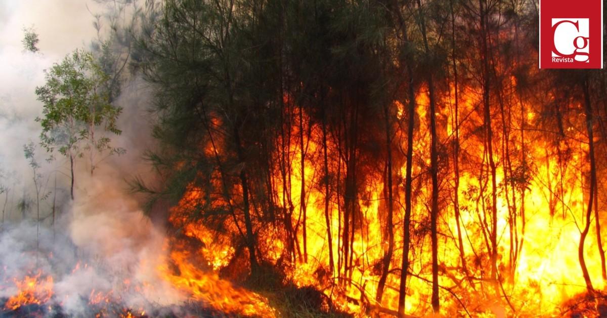 Incendios forestales Santander