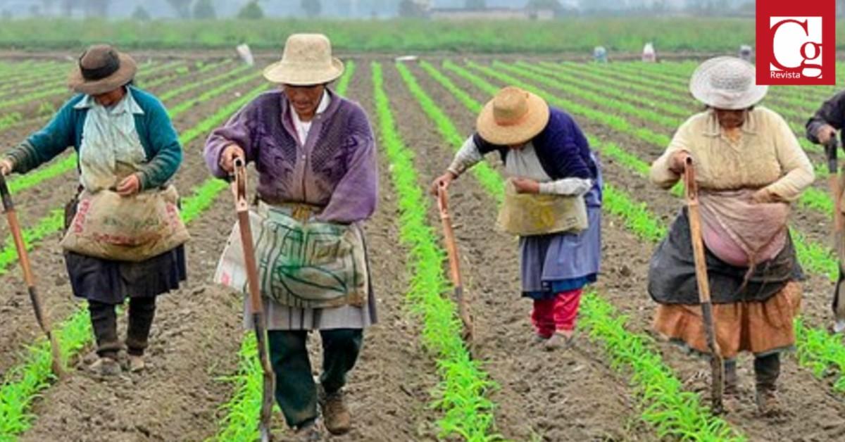 Las mujeres rurales colombianas, solicitan al Gobierno Nacional mejorar sus condiciones de vida, equidad en la ruralidad, garantías de sus derechos y las herramientas para el desarrollo del campo.