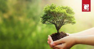 Para enfrentar el cambio climático, Comisión VI propone cátedra ambiental
